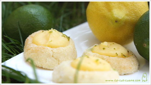 lemon curd lemon curd maison facile lemon curd thumbprint cookies ...