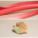 Tarte à la rhubarbe vanillée relevée au gingembre
